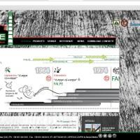storia1 sito falpe 2012-2016
